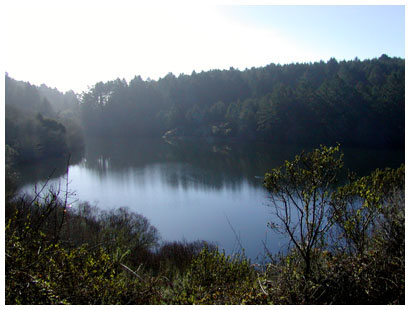bass lake, pt. reyes