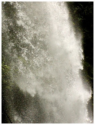 Silver Falls Photos (click for more)